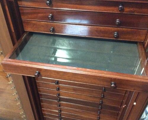 Mahogany 40 drawer collectors cabinet